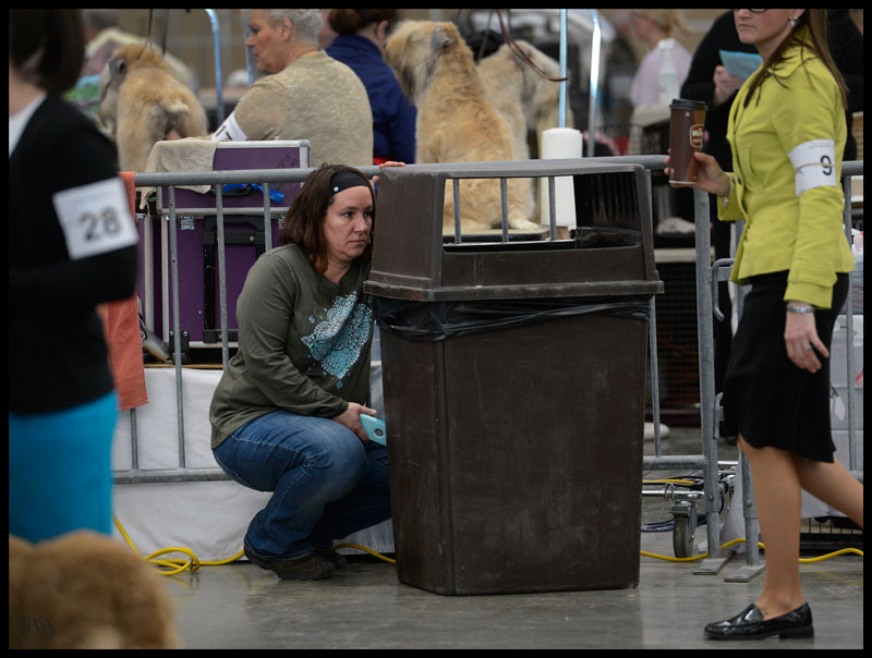 Diane Pachella Nelson hides behind a trash can so her dog Bentley won't see her. See, all the action isn't in the ring.