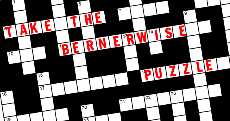 The BernerWise Puzzle: Can you solve these Berner teasers?