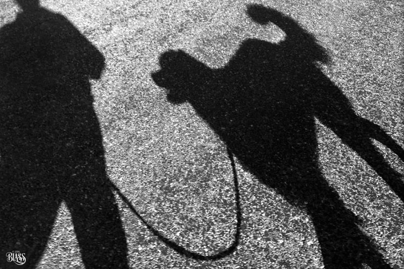 Shooting shadow selfies: Have fun taking advantage of light