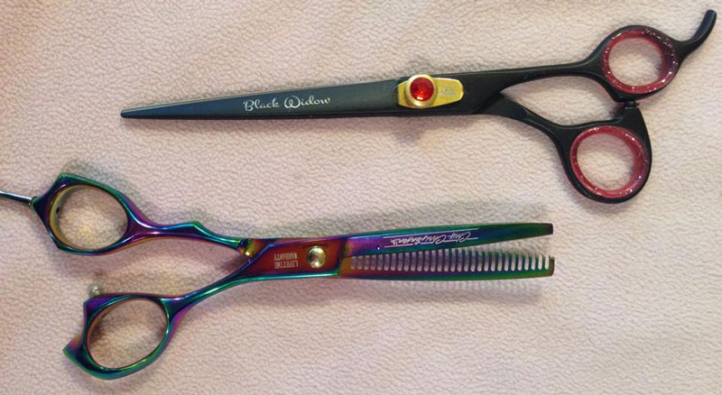 Two key tools: Scissors (top) and thinning shears.