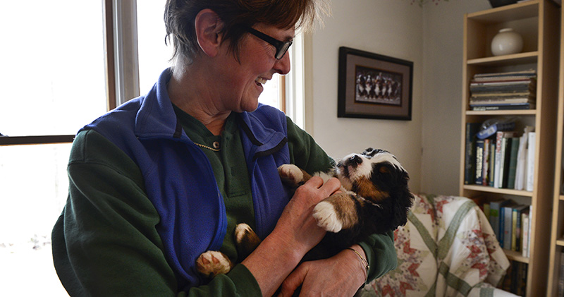 Angela Evans with Bernese Mountain Dog puppy