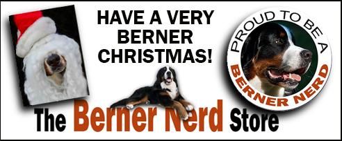 berner nerd christmas ad