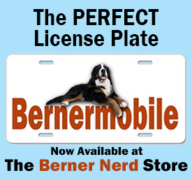 berner license plate ad