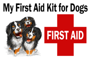 Eileen's First Aid Kit for Dogs: How to put one together